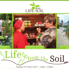 Life from the soil day
