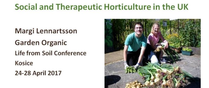 Social and Therapeutic Horticulture in the UK