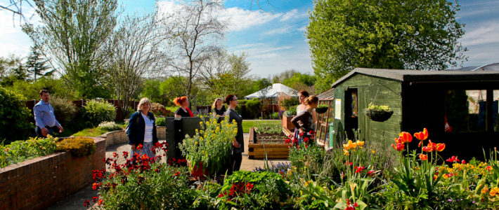 Second project mobility to Ryton Organic Gardens, UK
