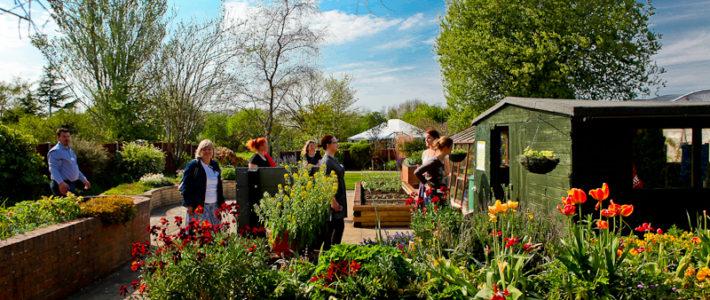 Druga projektna mobilnost maja 2016 v Ryton Organic Gardens, UK